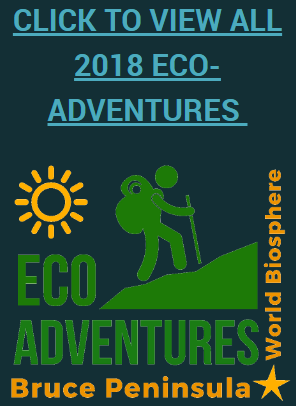 Bruce Peninsula Biosphere Association Eco Adventures